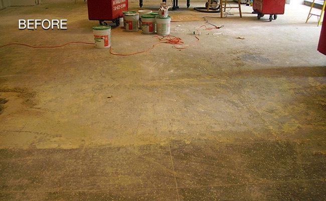 terrazzo-carpet-removed