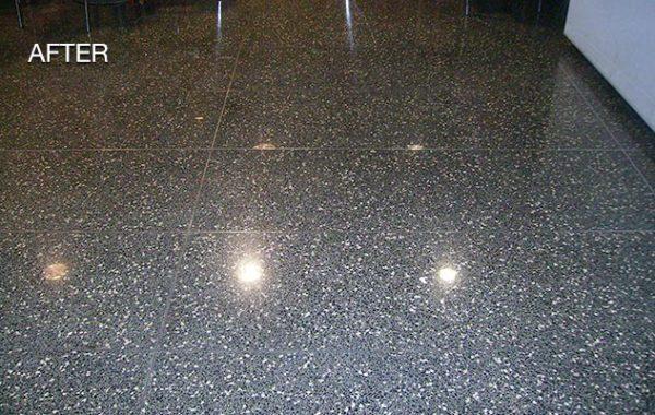 Terrazzo Floor Refinished